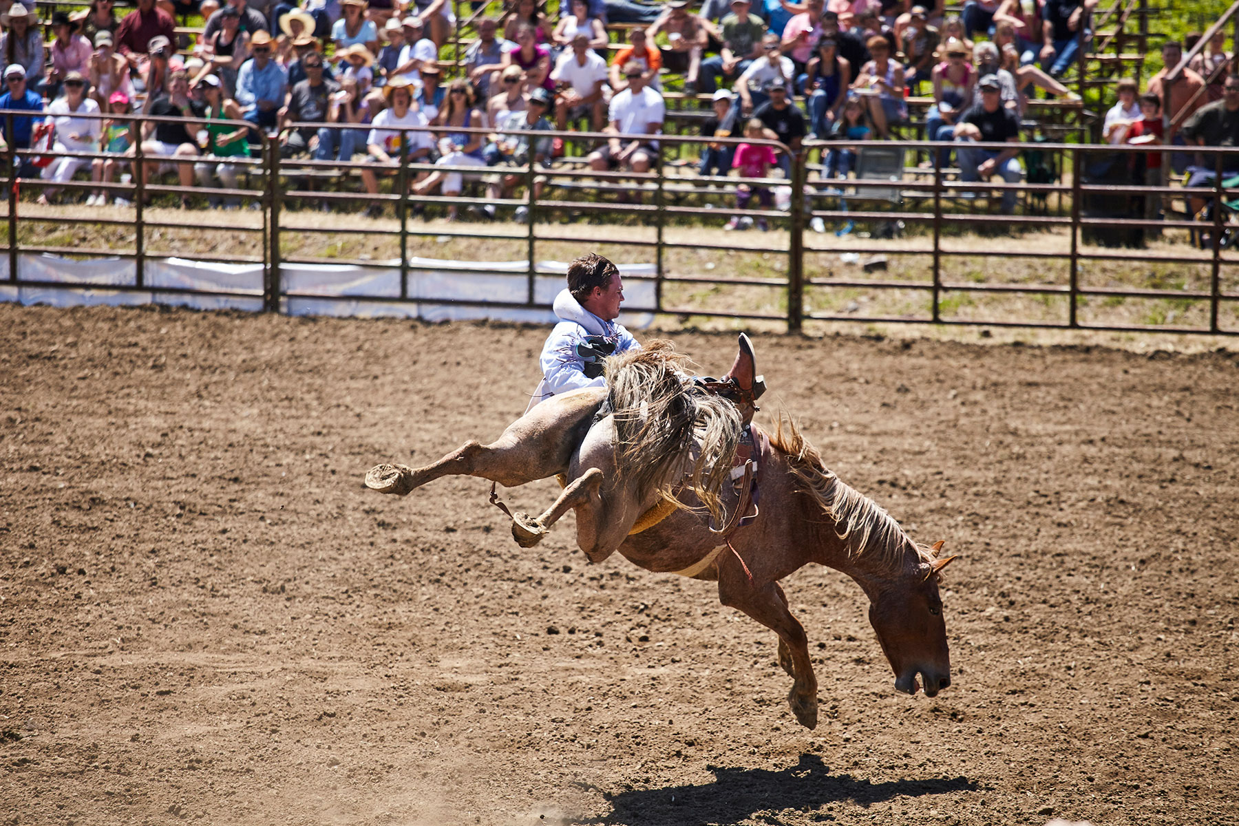 Matt Hoover Photography Kansas City Missouri Rodeo