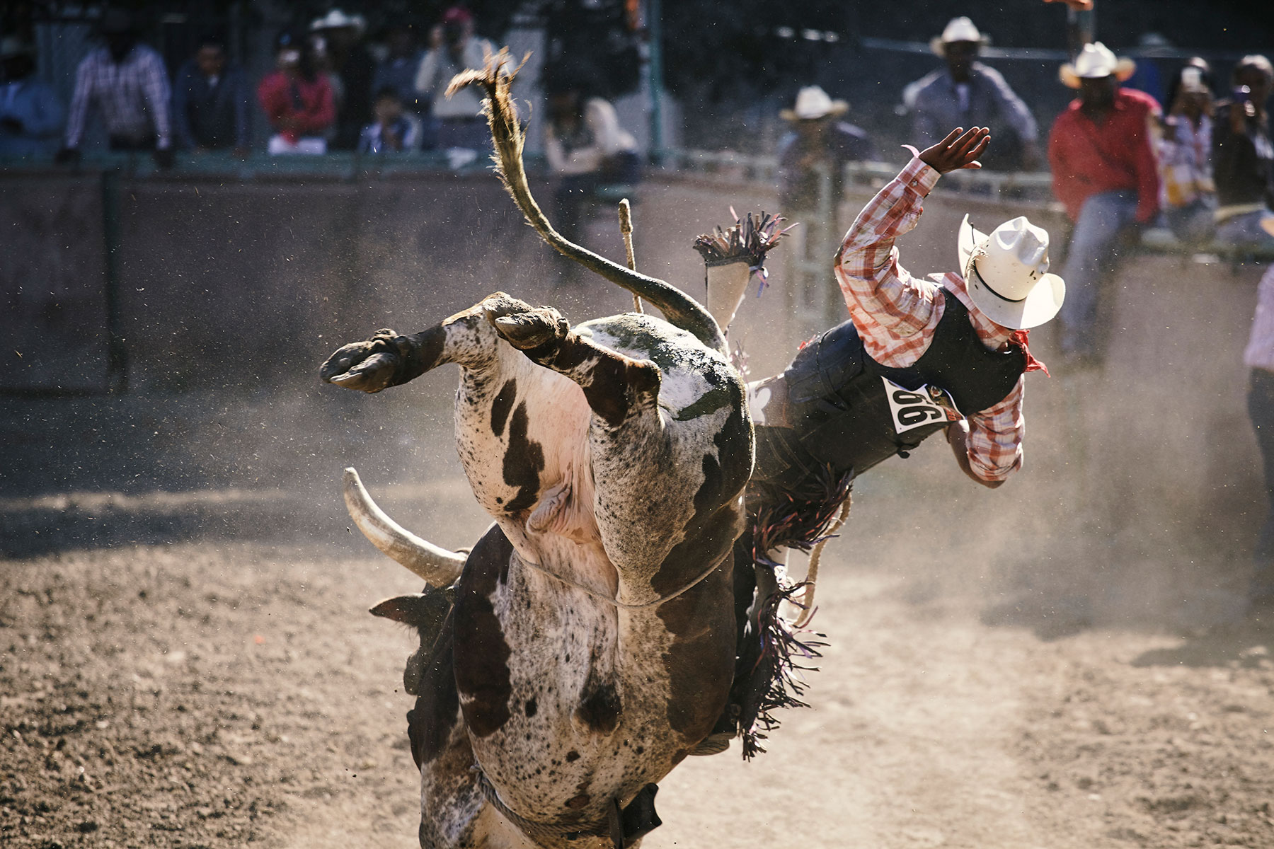 Matt Hoover Photography Bill Pickett Rodeo